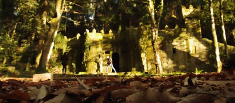 La finca del Frendoal, el bosque encantado